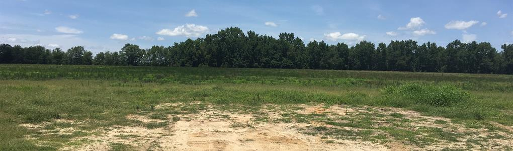 Owner Financed Acreage : Metter : Candler County : Georgia