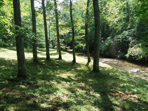 Land Sell Patrick County, Virginia : Meadows Of Dan : Patrick County : Virginia