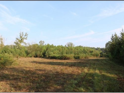 70 Acres In Neshoba County In Union : Union : Neshoba County : Mississippi