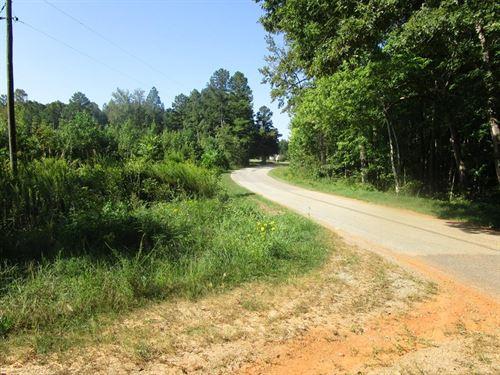 Ready For Hunting In Southern VA : Kenbridge : Lunenburg County : Virginia
