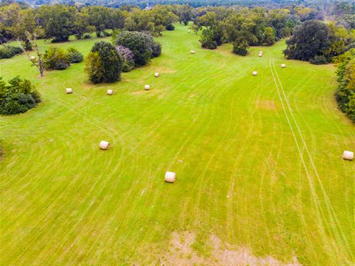 Beautiful Mini-Farm For Horses : Blakely : Early County : Georgia
