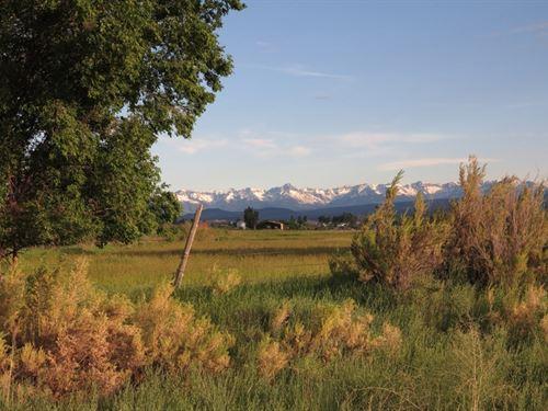 Miami Road Farm, Llc : Montrose : Colorado