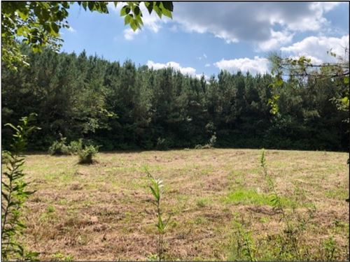 57 Acres In Lauderdale County In CO : Collinsville : Lauderdale County : Mississippi
