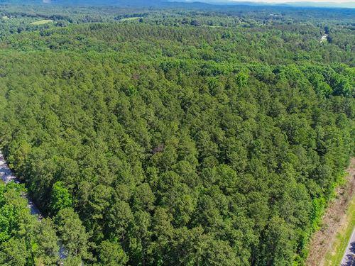Coffee Road Tract 4 : Walhalla : Oconee County : South Carolina