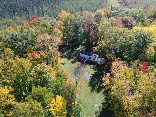 Wooded Hunting Acreage Pine : Finlayson : Pine County : Minnesota