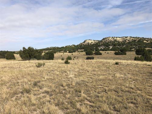 Red Creek Ranch Bronquist East : Pueblo : Colorado