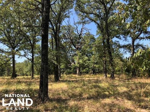 33 Acres, Wooded, Open Areas : Malakoff : Henderson County : Texas