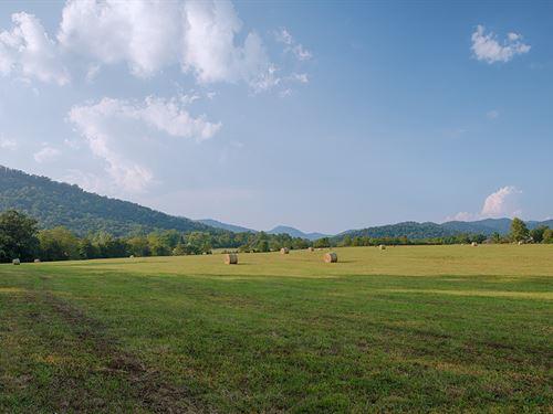 319+/- Acre Farm In Central Va : Faber : Nelson County : Virginia