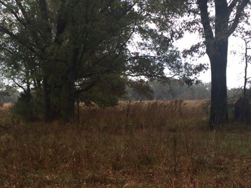 Premier Farm OR Getaway Very Close : Terry : Hinds County : Mississippi