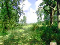 Ultimate Recreational Property For : Mtn View : Howell County : Missouri