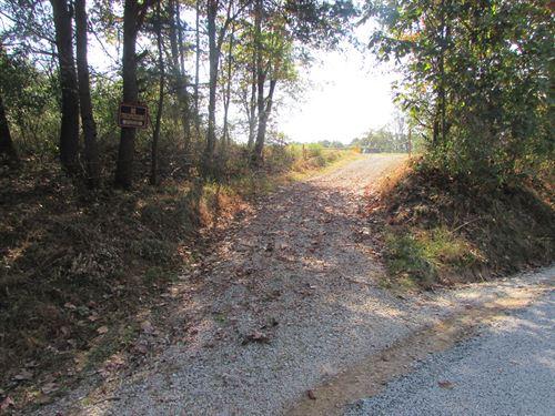 Perfect 132.5 Acres In Wv : Ellenboro : Ritchie County : West Virginia
