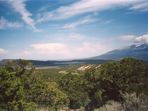 18.8 Private Acres With Trees : Fort Garland : Costilla County : Colorado