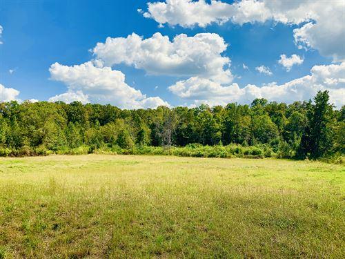 Mini Farm, Cedartown, Ga : Cedartown : Polk County : Georgia