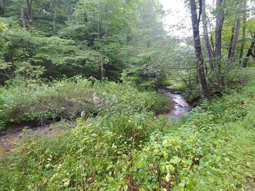 Secluded Lot Grayson County, VA : Fries : Grayson County : Virginia