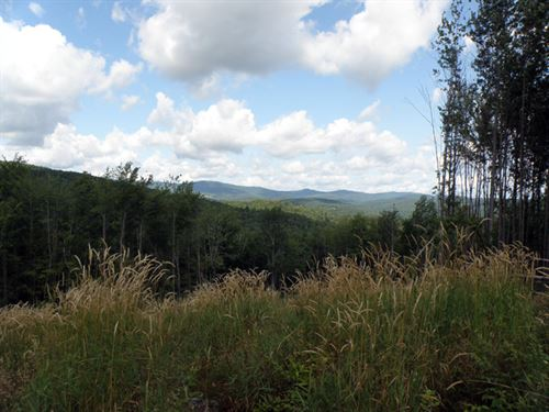 Winch Hill West : Roxbury : Washington County : Vermont