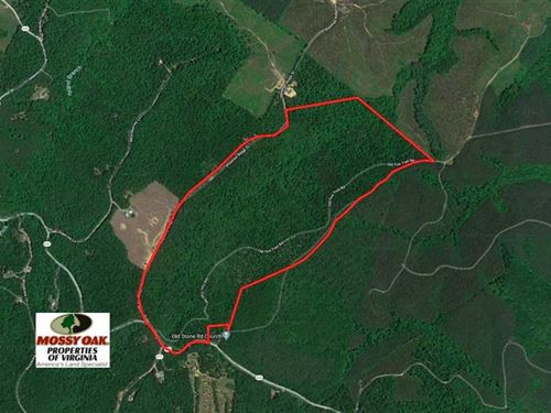 193 Acres of Hunting And Recreatio : Huddleston : Bedford County : Virginia