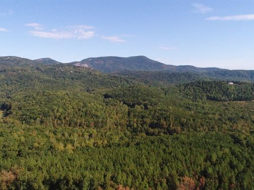 75+/- Acres Prime Upstate Location : Landrum : Greenville County : South Carolina