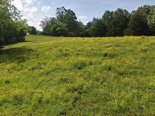 Southern Mo Grass Farm For Sale : Hartville : Wright County : Missouri