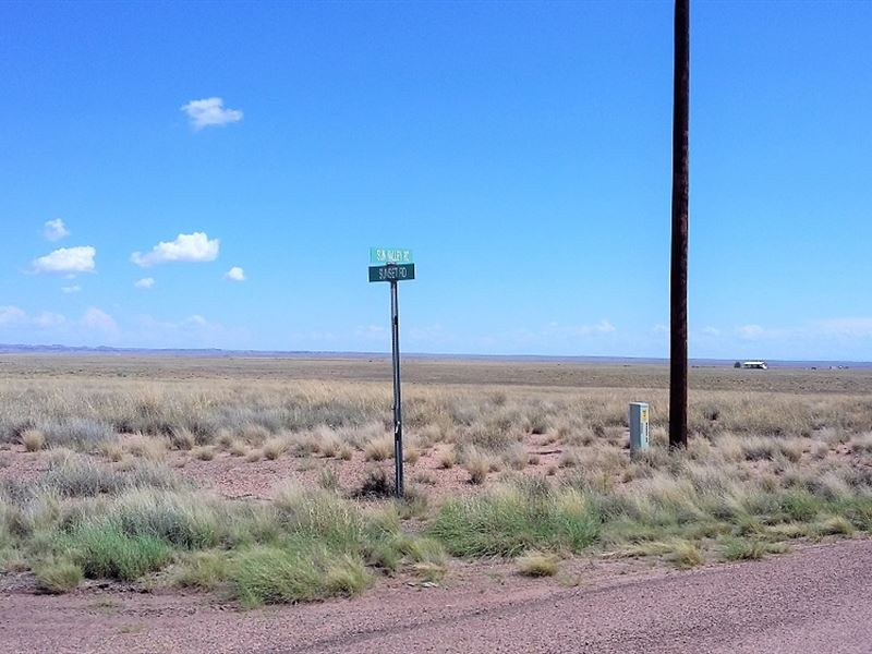 Beautiful, Painted Desert, $229 P/M : Sun Valley : Navajo County : Arizona