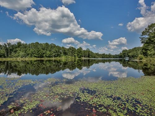 Private Lake, Timber, & Seclude : Buena Vista : Marion County : Georgia