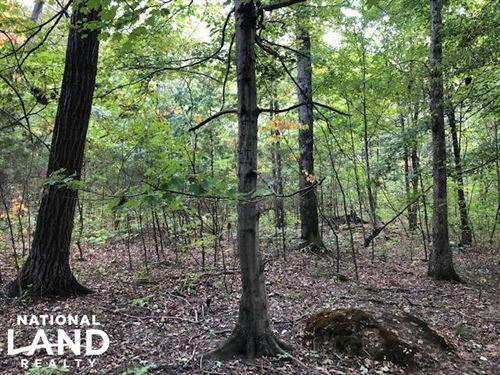 Ideal Hunting Tract Close to Bowlin : Bowling Green : Warren County : Kentucky