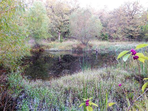 Recreational Hunting Homesite Land : Paris : Lamar County : Texas