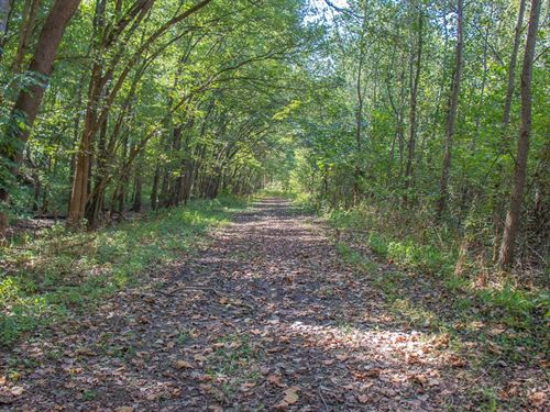 Macoupin County 110 Acre Hunting : Carlinville : Macoupin County : Illinois
