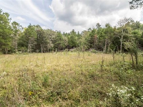 38 Acres For Sale in Marquand, Mis : Marquand : Madison County : Missouri
