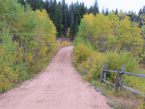 Home Again Retreat : Livermore : Larimer County : Colorado