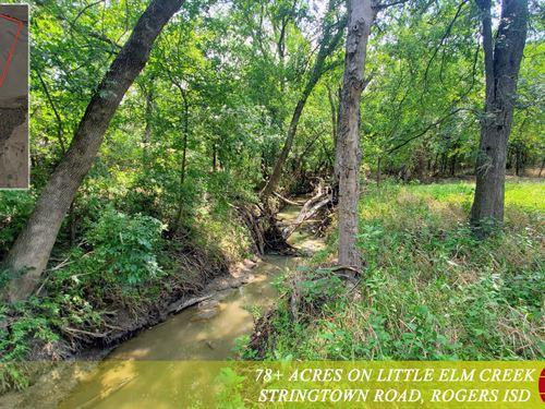 78 Acres, Little Elm Creek : Temple : Bell County : Texas