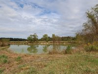 Big Canoe Creek Farm & Hunting Land : Ashville : Saint Clair County : Alabama