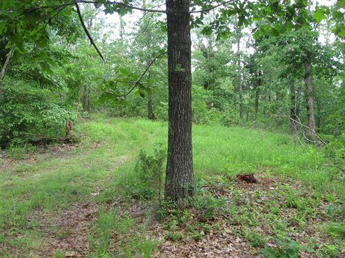 Ozark Land Near Buffalo River : Yellville : Marion County : Arkansas