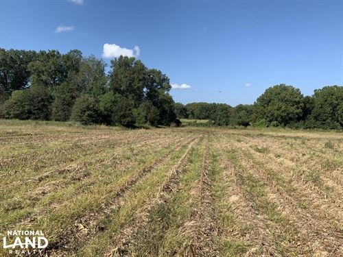 Irrigated Farmland With Hunting : Winnsboro : Franklin Parish : Louisiana