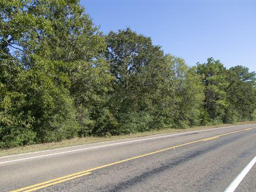 330 Acres Fm 230 Tract 6 : Trinity : Walker County : Texas