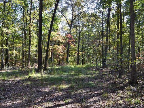 Surveyed, 22.52 Acres of Pri : Jasper : Newton County : Arkansas