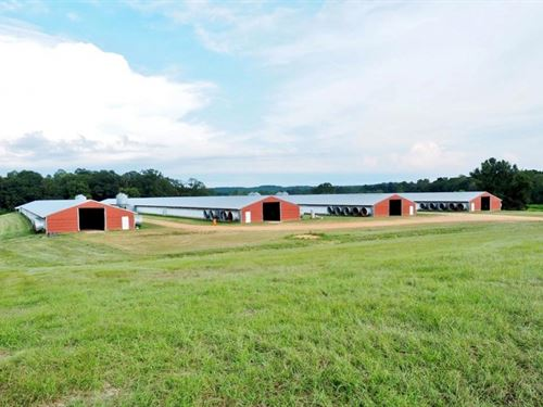Poultry Broiler Farm With Natural : Monticello : Lawrence County : Mississippi