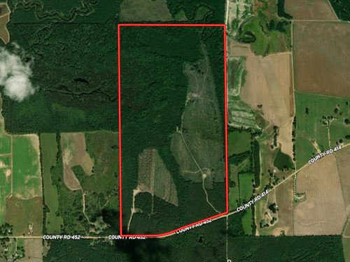 Naron Creek 309.24 : Vardaman : Calhoun County : Mississippi