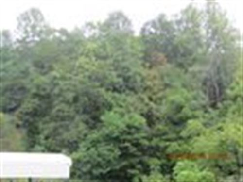 31.9 Acre Recreational Tract : Lexington : Rockbridge County : Virginia