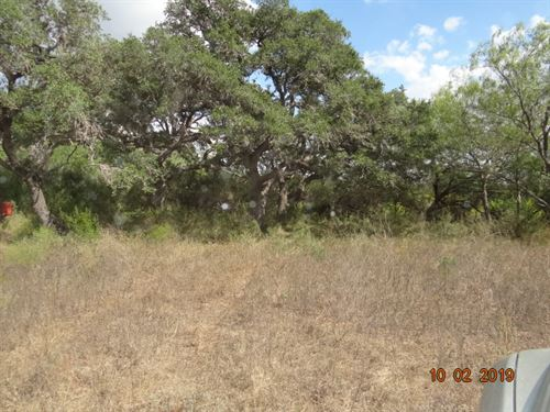 Homesite And Hunting : Mineral : Bee County : Texas