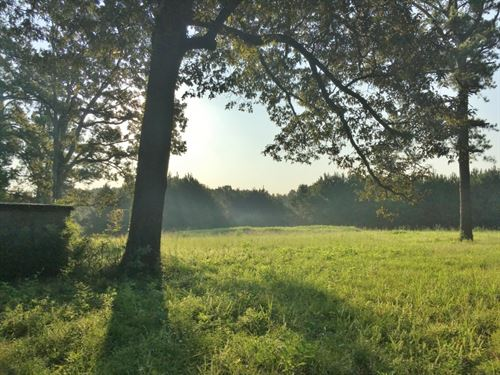 12.32 Acre Rural Home Site Land : Mount Olive : Covington County : Mississippi