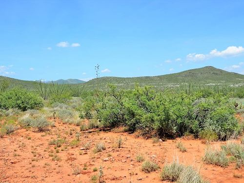 Prime Scenic Ranch Land, $334/Mo : Douglas : Cochise County : Arizona