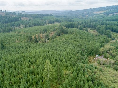 78.74 Acres in Washougal, WA : Washougal : Clark County : Washington