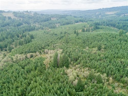 83.62 Acres in Washougal, WA : Washougal : Clark County : Washington