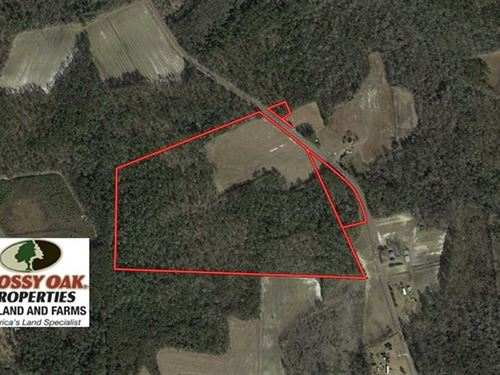 Under Contract, 45 Acres of Farm : Whiteville : Columbus County : North Carolina
