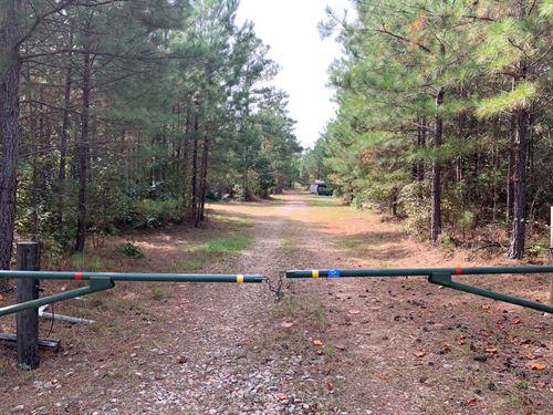 Mature Pines, Hardwoods, Hunting : Good Hope : Walton County : Georgia