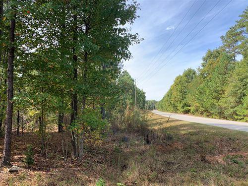 Pine, Hardwood, Beautiful Shoals : Good Hope : Walton County : Georgia