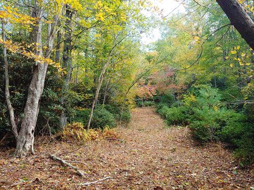 Recreational Land Blue Ridge : Floyd : Virginia
