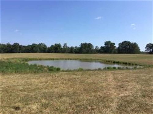 160 Acres of Pasture And Hunting : Summersville : Shannon County : Missouri