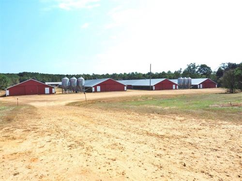 8 House Broiler Poultry Farm 92 Acr : Philadelphia : Winston County : Mississippi