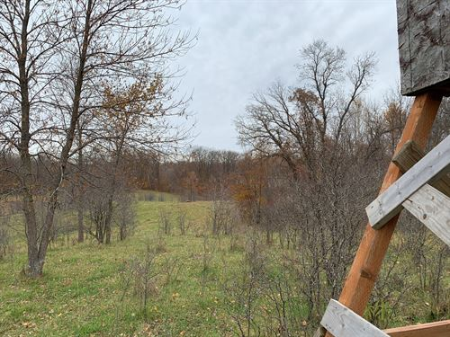 Hunting Recreation Pasture Land : Lengby : Polk County : Minnesota
